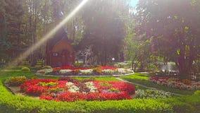 Μια μικρή εκκλησία στα ξύλα Στοκ Εικόνες