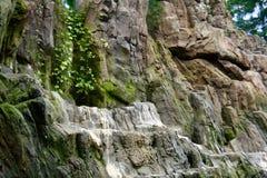 Μια μικρή λίμνη με τις εγκαταστάσεις, τους κλάδους και τα δύσκολους βουνά και τους απότομους βράχους στοκ εικόνες με δικαίωμα ελεύθερης χρήσης