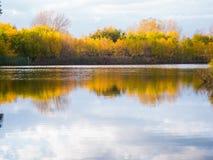 Μια μικρή λίμνη στο πάρκο, τα κιτρινίζοντας δέντρα κατά μήκος της ακτής Η αντανάκλαση του ουρανού και των δέντρων στο νερό της λί στοκ φωτογραφίες
