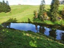 Μια μικρή λίμνη στο χλοώδες οροπέδιο της σειράς βουνών Churfirsten στοκ φωτογραφία
