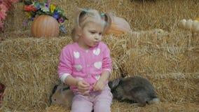 Μια μικρή συνεδρίαση κοριτσιών σε ένα άχυρο παίζει με τα ζωντανά κουνέλια απόθεμα βίντεο