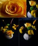 Μια μικρή floral ρύθμιση στο μαύρο υπόβαθρο Πράσινο και κίτρινο χρώμα σχεδίου Το χρυσάνθεμο, αυξήθηκε, σιτάρια Στοκ εικόνες με δικαίωμα ελεύθερης χρήσης