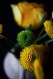 Μια μικρή floral ρύθμιση στο μαύρο υπόβαθρο Πράσινο και κίτρινο χρώμα σχεδίου Το χρυσάνθεμο, αυξήθηκε, σιτάρια Στοκ Φωτογραφίες