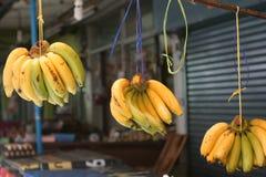 Μια μπανάνα Στοκ εικόνα με δικαίωμα ελεύθερης χρήσης