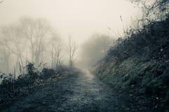 Μια μυστηριώδης πορεία μια απόκοσμη ομιχλώδη χειμερινή ημέρα στην επαρχία Με μια σέπια εκδώστε Λόφοι Malvern, Worcestershire, UK στοκ φωτογραφία με δικαίωμα ελεύθερης χρήσης
