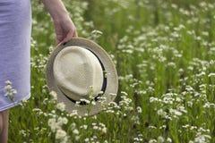 Μια νέα γυναίκα κρατά μια ανθοδέσμη chamomile στα χέρια της στοκ εικόνες με δικαίωμα ελεύθερης χρήσης