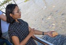 Μια νέα γυναίκα ρίχνει το ψωμί για τα ψάρια στον ποταμό στοκ φωτογραφία με δικαίωμα ελεύθερης χρήσης