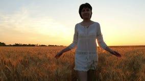 Μια νέα γυναίκα σε ένα άσπρο φόρεμα περπατά κατά μήκος ενός τομέα σίτου σε ένα υπόβαθρο ηλιοβασιλέματος απόθεμα βίντεο