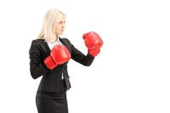 Μια νέα επιχειρηματίας με τα κόκκινα εγκιβωτίζοντας γάντια έτοιμα να παλεψουν Στοκ Φωτογραφία