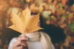 Μια νέα μαύρος-μαλλιαρή γυναίκα κρατά το φύλλο φθινοπώρου Φύλλα φθινοπώρου σε ένα πάρκο Στοκ Φωτογραφίες