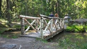 Μια νεολαία συνδέει το περπάτημα σε μια ξύλινη γέφυρα στο πάρκο απόθεμα βίντεο