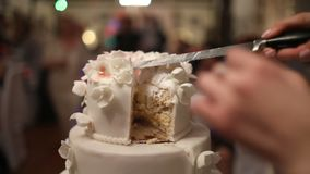 Μια νύφη και ένας νεόνυμφος κόβουν το γαμήλιο κέικ τους απόθεμα βίντεο