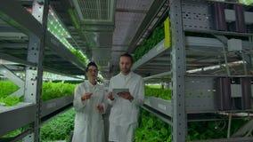 Μια ομάδα επιστημόνων στα άσπρα παλτά είναι στο διάδρομο ενός κάθετου αγροκτήματος με έναν υπολογιστή ταμπλετών και συζητά φιλμ μικρού μήκους