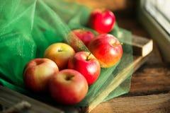 μια ομάδα κόκκινων φρέσκων μήλων κήπων στην ξύλινη φυσική έννοια υποβάθρου για τα φρέσκες φυσικές τρόφιμα και τις βιταμίνες Στοκ Εικόνες