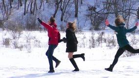 Μια ομάδα φίλων τρέχει στο χιόνι κίνηση αργή απόθεμα βίντεο