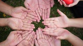 Μια ομάδα χεριών που κρατά μια κόκκινη καρδιά απόθεμα βίντεο
