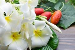 Μια ομάδα άσπρου λουλουδιού plumeria και κόκκινης κολοκύθας Στοκ Φωτογραφία