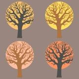 Μια ομάδα δέντρων Στοκ Εικόνες