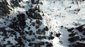 Μια ομαλή κάθοδος στον κηφήνα πέρα από την κορυφή και τα έλατα χιονιού Η άποψη από την κορυφή στα βουνά με έναν κηφήνα, οι πέτρες απόθεμα βίντεο