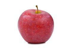 Μια ολόκληρη κόκκινη Apple στην άσπρη κινηματογράφηση σε πρώτο πλάνο υποβάθρου που απομονώνεται Στοκ εικόνα με δικαίωμα ελεύθερης χρήσης