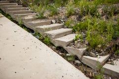Μια παλαιά εγκαταλειμμένη σκάλα τσιμέντου που εισβάλλεται με τη χλόη Στοκ Φωτογραφία