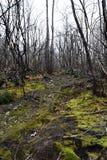 Μια παράξενη θέα στο βουνό Στοκ εικόνα με δικαίωμα ελεύθερης χρήσης