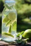 Μια περιστροφή της μέντας και του ασβέστη σε ένα μπουκάλι με το σπιτικό κοκτέιλ mojito στοκ εικόνες με δικαίωμα ελεύθερης χρήσης