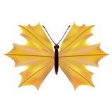 Μια πεταλούδα με ένα φύλλο σφενδάμου Στοκ Εικόνες