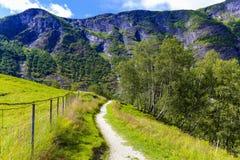 Μια πορεία οδοιπορίας σε ένα βουνό Στοκ Εικόνες