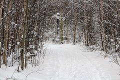 Μια πορεία πεζοπορίας κατά τη διάρκεια του χειμώνα που εξαφανίζεται γύρω από μια γωνία Στοκ Φωτογραφίες