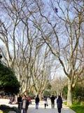 Μια πορεία του πάρκου Fuxing Στοκ φωτογραφία με δικαίωμα ελεύθερης χρήσης