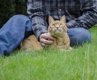 Μια πορτοκαλιά γάτα θέτει με τον ιδιοκτήτη του Στοκ Φωτογραφίες