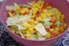 Μια πράσινη σαλάτα με την πάπρικα Στοκ Εικόνα
