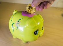 Μια πράσινη piggy τράπεζα με ένα χρυσό bitcoin Στοκ Εικόνες