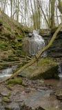 Μια ροή/ένας καταρράκτης ποταμών στο Margarethenschlucht Στοκ φωτογραφία με δικαίωμα ελεύθερης χρήσης