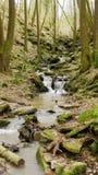 Μια ροή/ένας καταρράκτης ποταμών στο Margarethenschlucht Στοκ φωτογραφίες με δικαίωμα ελεύθερης χρήσης