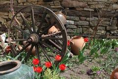 Μια ρόδα στον κήπο τουλιπών στοκ φωτογραφία