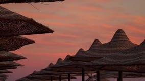 Μια σειρά των ομπρελών παραλιών ενάντια στον ουρανό στην αυγή απόθεμα βίντεο