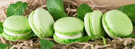 Μια σειρά των πράσινων μακαρονιών μπισκότων με τα φύλλα μεντών Στοκ Εικόνα