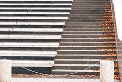 Μια σκάλα πετρών που σκορπίζεται με το πεσμένο φωτεινό κίτρινο φθινόπωρο φεύγει Με τη θαμπάδα και το φωτεινό κυριώτερο σημείο Στοκ Εικόνα
