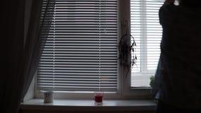Μια σκιαγραφία γυναικών κλείνει τη γρίλληα παραθύρου τυφλών το πρωί στο σπίτι απόθεμα βίντεο
