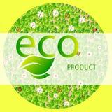 Μια στρογγυλή μορφή των φύλλων, πεταλούδα, ladybug και chamomiles με το προϊόν eco επιγραφής σε ένα ελαφρύ υπόβαθρο διανυσματική απεικόνιση