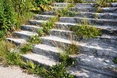 Μια συγκεκριμένη σκάλα Στοκ εικόνες με δικαίωμα ελεύθερης χρήσης