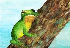Μια συνεδρίαση βατράχων σε ένα δέντρο watercolor Στοκ Εικόνα