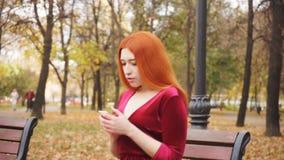 Μια συνεδρίαση νέων κοριτσιών σε έναν πάγκο στο πάρκο και αναμονή για μια κλήση απόθεμα βίντεο