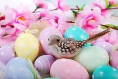 Μια συνεδρίαση πουλιών στα αυγά Πάσχας που χρωματίζονται στα χρώματα κρητιδογραφιών με τα σημεία Στοκ Φωτογραφία
