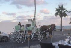 Μια συρμένη άλογο μεταφορά στο μέτωπο θάλασσας στοκ εικόνα