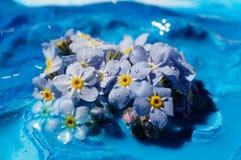 Μια σύνθεση των λουλουδιών, τέχνη Στοκ Φωτογραφίες