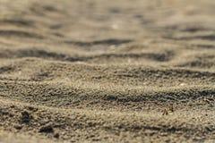 Μια σύσταση της άμμου ποταμών το καλοκαίρι μια ηλιόλουστη ημέρα στην έρημο Στοκ Εικόνες