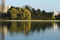Μια τέλεια ηλιόλουστη ημέρα Ένας τέλειος χρόνος για έναν περίπατο στο πάρκο Στοκ φωτογραφίες με δικαίωμα ελεύθερης χρήσης